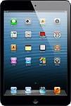 Apple 32 GB iPad Mini
