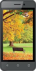 Intex Aqua Lions 4G Mobile Phone price in India.